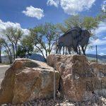 entrance sign at buffalo bluff rv park